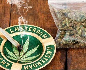 Чего ожидать от первой дегустации шишек марихуаны?